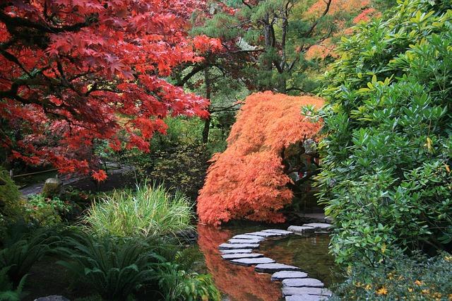 The Body Garden
